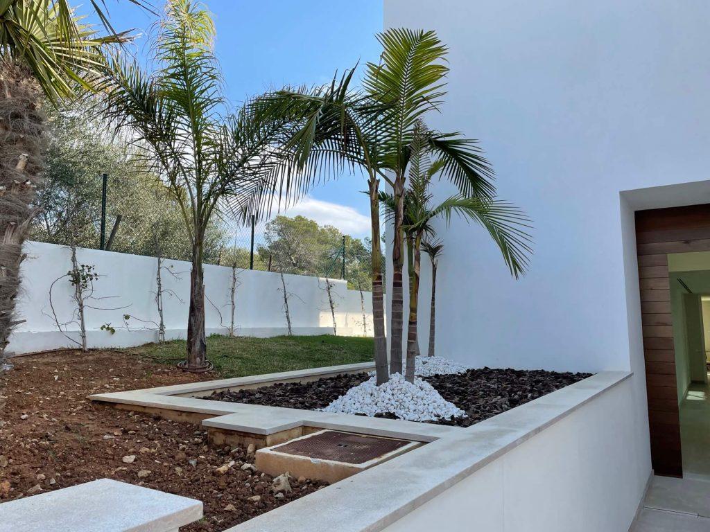 Palmeras plantadas en un jardin