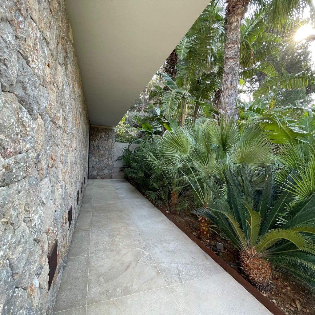Jardin con palmeras en Mallorca