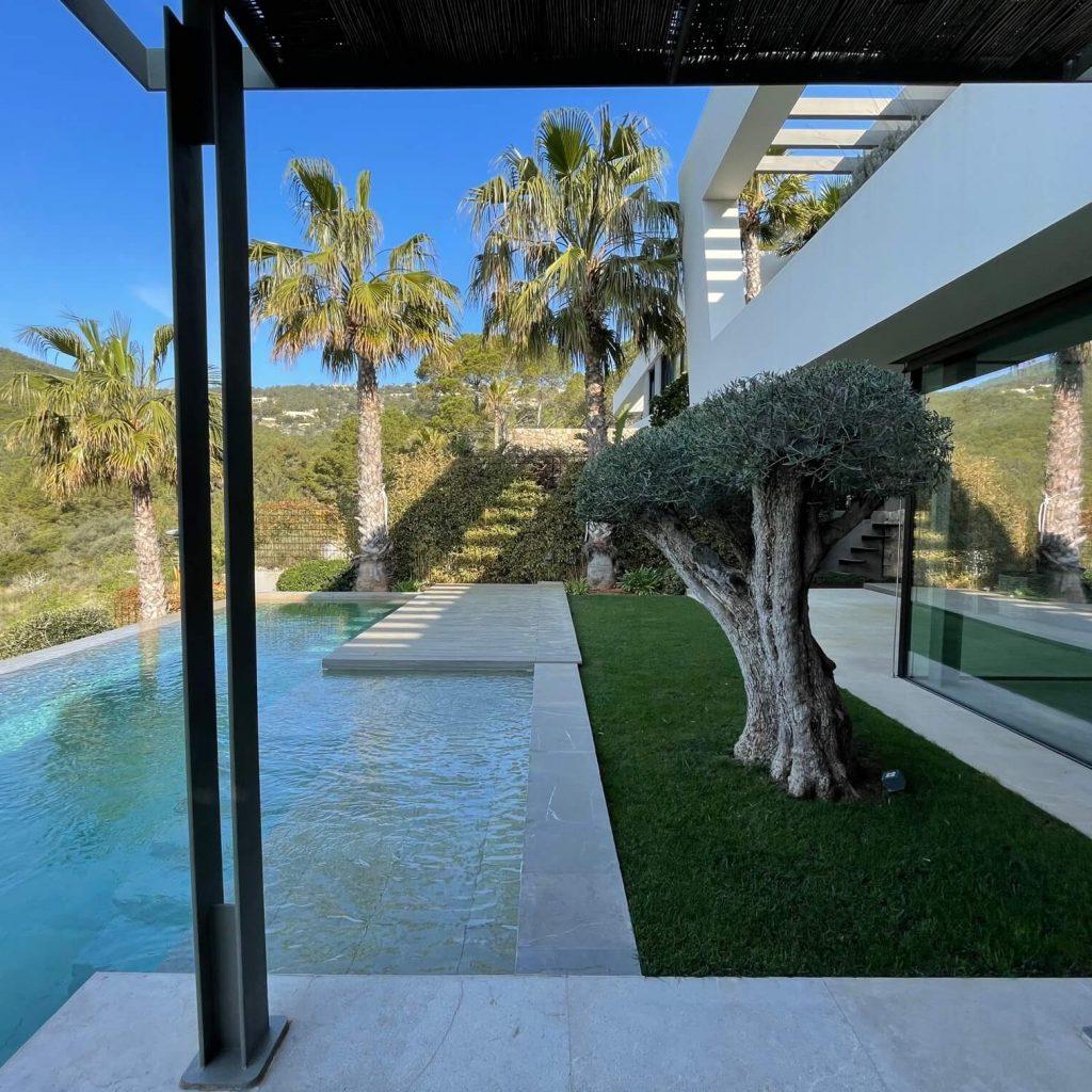 Jardín con piscina, palmeras y un olivo podado en Mallorca